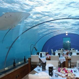Restaurant Ithaa Undersea